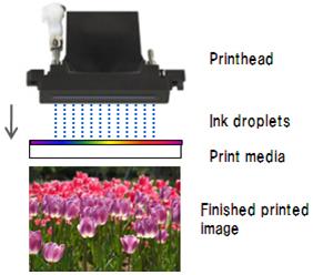 Digital Printing Processes   PDS International   +44 (0)1226